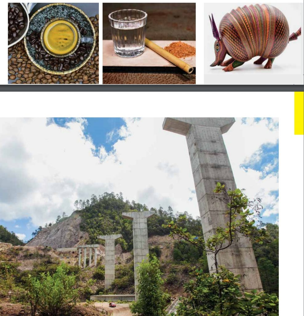 café pluma hidalgo, artesanías e infraestructura Oaxaca